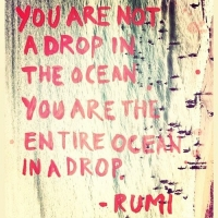 http://www.biodanzainvlaanderen.be/static/images/rumi-quote-5.jpg